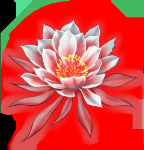 Dragonflower (I) Image