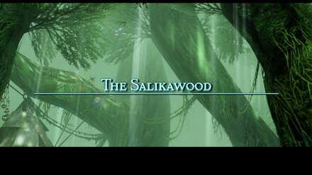 salikawood main story walkthrough final fantasy xii ffxii ff12