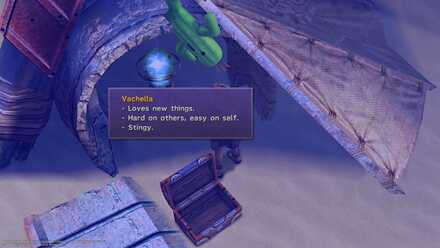 Cactuar Village Sidequest Cactuar Location FFX FF10 Final Fantasy Mercury Sigil  (24).jpg