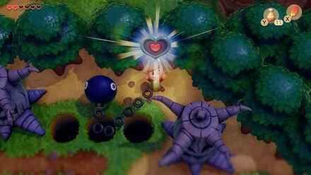 Heart Piece.jpg