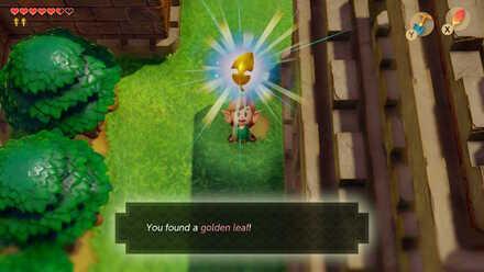 Golden Leaf 3-1.jpg