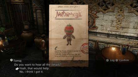 rogue tomato sidequest story walkthrough final fantasy xii ffxii ff12