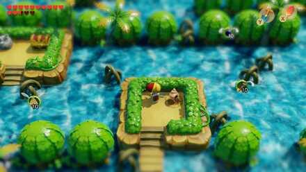 Seashell Location 36-1.jpg