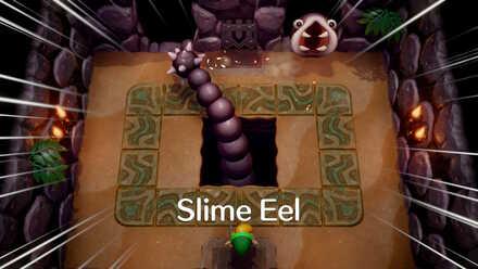 Slime Eel