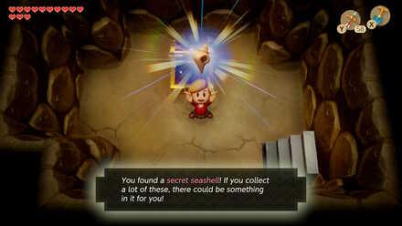 Secret Seashell 24