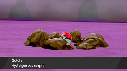 dynamax pokemon_catch_2.jpg