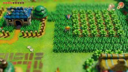 Grass Movement.jpg