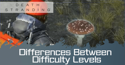 Differences between difficulty Levels