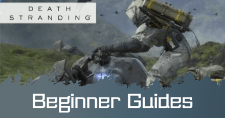 Beginner Guides .png