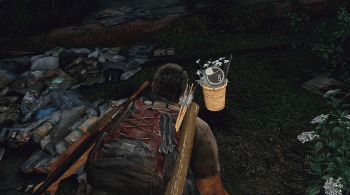 The Last of Us - Supplements.png