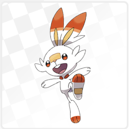 scorbunny_flags.png