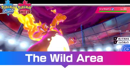 Wild Area