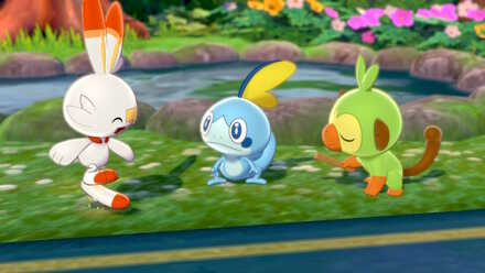 All 3 Starters