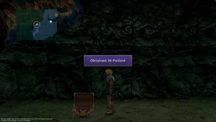 FFX Hi-Potion Mushroom Rockroad Aftermath obtainable item