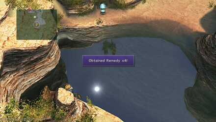 FFX Final Fantasy X Obtainable Items Bikanel Island Remedy