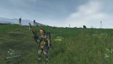Assault Rifle (HG Custom)