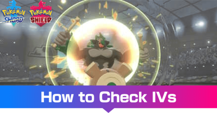 How to Check IVs