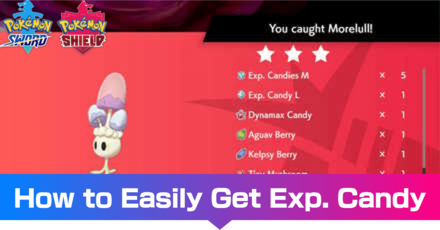 How to Easily Get Exp. Candy