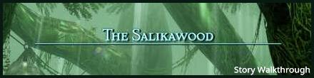 TheSalikawoods_FFXIIWalkthrough