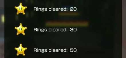 Perfect Score (Ring Race).jpg
