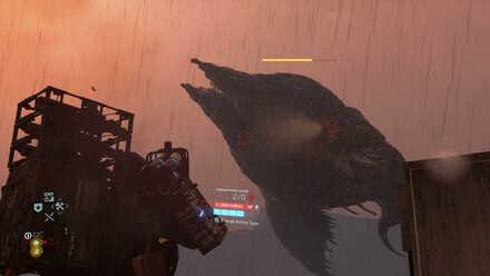 BT Whale.jpg