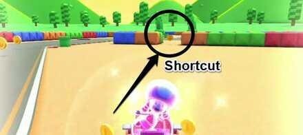 Shortcut (Mario Circuit 3R).jpg