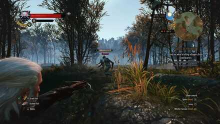 Combat - Crossbow-min.jpg