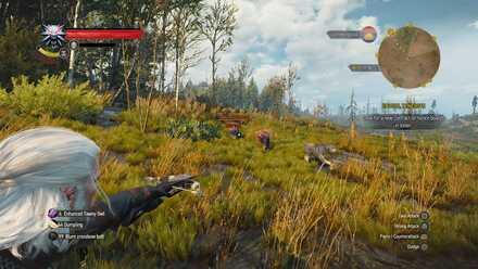 Crossbow - Banner.jpg