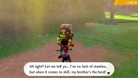 Stamina Brother.jpg