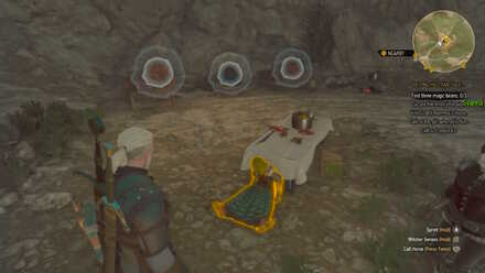 Witcher 3 Optional Bears