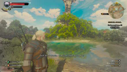 Witcher 3 Location Wisp 1