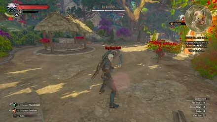Witcher 3 Boss Big Bad Wolf