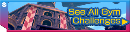Gym Challenge Category Banner.png