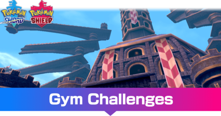 Gym Challenge Banner.png