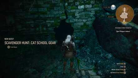Feline Witcher Silver Sword