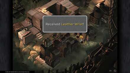Leather Wrist.jpg