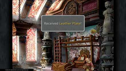 Leather Plate.jpg