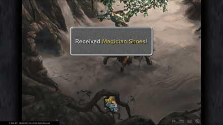 Magician Shoes.jpg