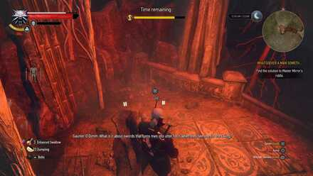 Witcher Location - Viper Silver Sword.jpg