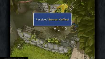 FF9 Burman Coffee