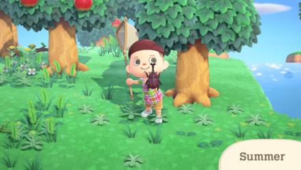 Nintendo Direct - Summer