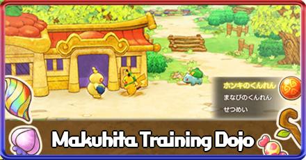 Makuhita Training Dojo Banner.png