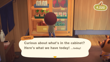 Nintendo Direct - Cabinet Items