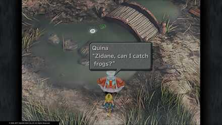 FF9 Frog Catching