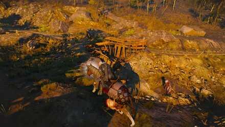 How to Fight on Horseback - Horse Axii.jpg