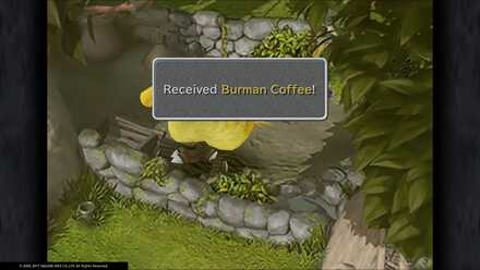 Burman Coffee.jpg