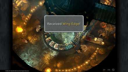 Wing Edge.jpg