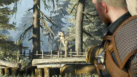The Nithing Walkthrough Choices And Best Choice The Witcher 3 Game8