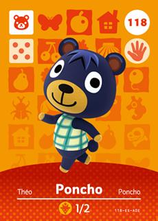 Poncho Icon