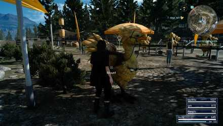 Ride Chocobo